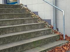 8 Stufen (divertentissima) Tags: 8 stufen treppe scala