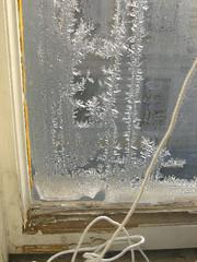 frost pattern (reenoreluv) Tags: wien vienna 15c frost pattern eisblumen ice winter cold window