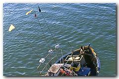 Da  ponte sobre o Canal Itajur, Cabo Frio (Z Lobato) Tags: brasil riodejaneiro barco cabofrio zrobertolobato traineira zlobato canalitajur