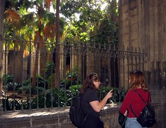 img_1172.jpg (cmrowell) Tags: barcelona spain cathedral petra espana cloister gothicquarter barrigotic spain2002 laseu backpackpurse joyzgr8