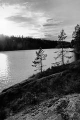 20150612078517 (koppomcolors) Tags: sweden sverige scandinavia värmland varmland koppom koppomcolors