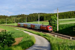 ÖBB 1116.028 Willings (3469) (christophschneider1) Tags: taurus öbb waldviertel 1116 doppelstockwagen wendezug willings franzjosefsbahn 1116028 rex2112