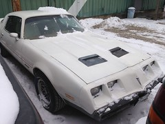 "1979 Pontiac Firebird • <a style=""font-size:0.8em;"" href=""http://www.flickr.com/photos/85572005@N00/19117228818/"" target=""_blank"">View on Flickr</a>"
