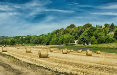 Terre de Provence... (marypink) Tags: summer sky landscape estate pov campagna cielo fields provence paesaggio provenza campi 2470mmf28 grouxlesbains nikond7200