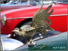 Hood Mascot (Alan B Thompson) Tags: 2015 car show suffolk eastanglia lumix fz72 hood mascot cockerel picassa