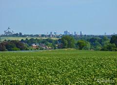 Skyline Brussels (Bvaerrts) Tags: brussels green tower skyline belgium belgique belgie border belgi bruxelles be agriculture brussel atomium rand meise periphery vlaamse
