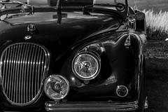 Jaguar XK120 Convertible (marc_morris1982) Tags: uk summer england blackandwhite white black classic beach car sunshine canon kent seaside classiccar shiny sigma sunny chrome vehicle mk2 jag british jaguar 700 18200 whitstable mkii markii tankerton mark2 xk120 18200mm sigma18200 sigma18200mm jaguarxk120 classicvehicle sigmadg canon700 700d canon700d canonuk dg18200 dg18200mm
