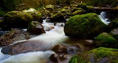 Green Falls (jfusion61) Tags: washington carbon river mt rainier national park falls water winter moss long exposure nikon d810 24mm f18 green fairfax forest reserve