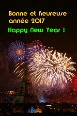 2017 2 (warmith) Tags: warmith paris eiffel tour tower eiffeltower toureiffel france fireworks feudartifice k7 14juillet july14th sigma70300mmf456dgapo pentax pentaxk7