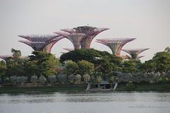 Singapore (StudioNine.photography) Tags: singapore chinatown flyer raffles templesingapore marinabarrage supertreegrove gardensbythebay worldtrekker unlimitedphotos