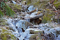 zaleđeni planinski potok / frozen mountain stream (Hrvoje Šašek) Tags: kum zasavskopogorje zasavskogorje potok stream zaleđenipotok frozenstream led ice voda water tok flow tvodenitok waterflow padina slope zima winter planina mountain planine mountains hribi planinar hiker planinari hikers planinarenje hiking staza put route path trail panorama pejzaž landscape vidik pogled view priroda nature šuma wood forest stablo tree stabla trees slovenija slovenia slowenien d3300