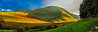 Robinsons Crags and it's Fells (steve.gombocz) Tags: sceneryshooting sceneryshots simplylandscapes landscapes nicelandscapes westcumbria cumbria colour colours color colourmania natureisbeautiful lakedistrictuk outandabout olympusamateurs landscapephotos panoramicphotos panoramas scenery landscapescenes hills fells sunlight shadows crags walking fellwalks robinsonscrags panoramicviews naturesviews landscapephotography landscapephotographs landscapepictures nicepictures flickrlandscapes explorelandscapes flickr explore explorescenery photography photographs olympus olympususers olympuscamerausers olumpuseurope olympuscolour olympusmzuiko25mmf18lens olympusdigitalcamerausers micro43rdsuk olympuszuikodigitalclub olympusem5mark2 olympusm25mmf18 mountains grass derwentfells nature