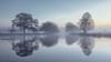 Cool Water (Andrew G Robertson) Tags: bushy park london surrey teddington hampton heron pond dawn mist fog 5d mkiv mk4 canon