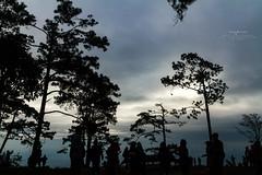 Cloudy day Phu Kradueng (snksinicksink192) Tags: phukradueng loei thailand traval travalphoto