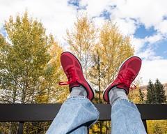 Laid Back (Oliver Leveritt) Tags: nikond610 afsnikkor2470mmf28ged oliverleverittphotography sb800 flash speedlight colorado beavercreek autumncolors autumn colors foliage trees red skechers shoes athleticshoes feet