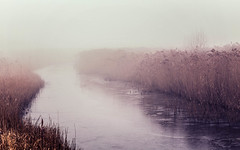 Stodmarsh in the Mist (JennTurner) Tags: canon 6d 24105mm stodmarsh kent uk mist nature countryside winter water river frozen reeds