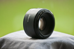 Nifty Fifty (MHO Photography) Tags: 50mm f18ii nifty fifty niftyfifty canon simplicity justright 1d mk2n 70200f4l f4l is 70200 eos1d mkiin