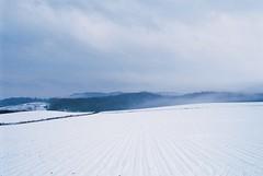 farm (masa_0202) Tags: contax aria carlzeissdistagon2825 japan hokkaido farm winter