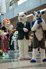 FCParade2017_02_-20170114-00047 (Kory / Leo Nardo) Tags: fur furry fursuit suiting dance party dj con convention further confusion fc san jose marriott center parade walk march fc2017 2017 pupleo kory
