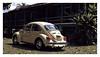 17_02_05_105p (2) (Quito 239) Tags: volkswagen 1971volkswagen 1971volkswagensuperbeetle superbeetleconvertible vw bug vocho escarabajo puertorico haciendaigualdad volky