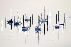 Misty Morning Marina (fstop186) Tags: misty morning marina yachts berth reflections masts moorings highkey contrast