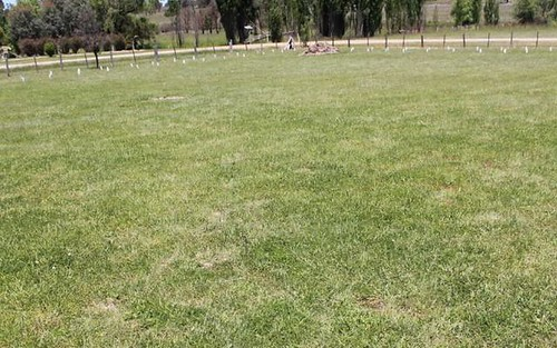 Lot 1Sect.15 Dp758344 Cnr Lachlan & Tenterfield Streets, Deepwater NSW