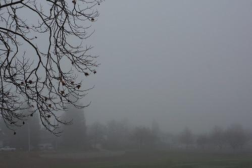 2017-01-15 No colorful Sunrise, just Fog [#1]