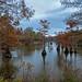 Harrell Lake 2