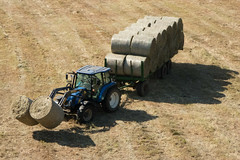 making straw Heumachen (martinhuhn) Tags: tractor field traktor feld straw stroh kugelnkreise