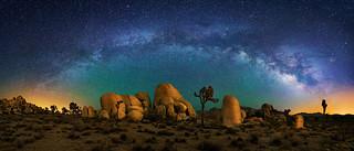 Joshua Tree and Milky Way Panorama