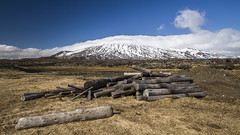 Spring In Iceland (Julien Ratel ( Júllí Jónsson )) Tags: wood nature canon iceland spring awakening may glacier mai driftwood destination popular wandering ísland islande canon1022 snaefellsjökull eos7d blueju38 julienratel julienratelphotography blueju snefellsnes destinationislande