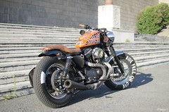 883 (megaand87) Tags: street bike harley motors moto davidson bikers 883