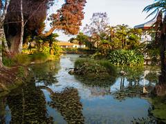 147 - Rotorua Museum Park