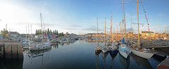 Paimpol morning 17th July 2015 (Matchman Devon) Tags: morning classic early harbour regatta channel paimpol