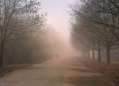 Foggy Winter Mornings ... (MargoLuc) Tags: misty mornings walk fog december man horse trees path cold mood dreamy days outside