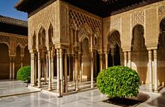 Patio de los Leones. Alhambra (Tigra K) Tags: granada andalucía spain es 2015 applied architecture carving column lattice museum ornament palace tree arch