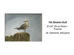 "7th District Gull • <a style=""font-size:0.8em;"" href=""https://www.flickr.com/photos/124378531@N04/31659617684/"" target=""_blank"">View on Flickr</a>"