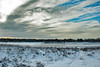 frozen lake (Janne Fairy) Tags: ice eis snow lake see sky himmel canon canon500d eos500d schnee
