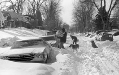 A man carries logs, others shovel snow near 2377 Elm Street in the South Park Hill neighborhood of Denver, Colorado after the 1982 snowstorm. (Denver Public Library Digital Collection)