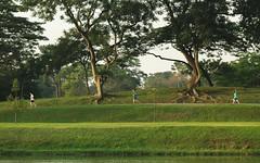 Homo sapiens sapiens (Robert-Ang) Tags: joggers jogging exercise japanesegarden singapore homosapienssapiens nature landscape