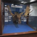 Inside shipboard museum on USS ROOSEVELT 12-29-16 thumbnail