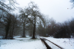 WINTER DERRIGORREZ (ERREACHE) Tags: araba alava elurra euskadi euskalherria izarra nieve snow winter estribacionesdelgorbea españa