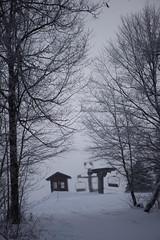 sunday-3058 (FarFlungTravels) Tags: winter ski skiing laurelhighlands pennsylvania reservoir morning sunrise foggy snow squall