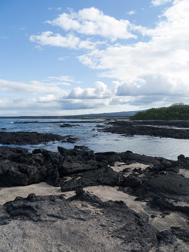 """Galapagos-76.jpg • <a style=""""font-size:0.8em;"""" href=""""http://www.flickr.com/photos/91306238@N04/32094899990/"""" target=""""_blank"""">View on Flickr</a>"""