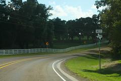 FM390wRoadSignCurve (formulanone) Tags: texas road sign 390 fm390