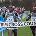 IAAF Antrim International XC 2017
