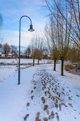 Beukenpark-46-1 (stevefge) Tags: beukenpark beuningen landscape snow winter gelderland sky footprints nederland netherlands nature nl natuur nederlandvandaag reflectyourworld trees lamps