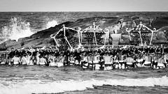 Wave (葛臨人(Kasarinchu)) Tags: japan 千葉県 いすみ市 大原はだか祭り 祭り 神輿 海