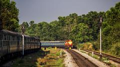 Crossing at Mulki (Dheeraj Clickr Rao) Tags: mulki konkan konkanrailway westernghats karnataka matsyagandha express train transportation track trees railway railways rail railfanning railwaystation canon canoneos550d