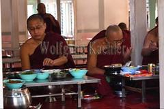 30099739 (wolfgangkaehler) Tags: 2017 asia asian southeastasia myanmar burma burmese mandalay mahagandayonmonastery mahagandayonmonastary people person monks buddhist buddhistmonasteries buddhistmonastery buddhistmonk buddhistmonks almsceremony almsbowls meal eating